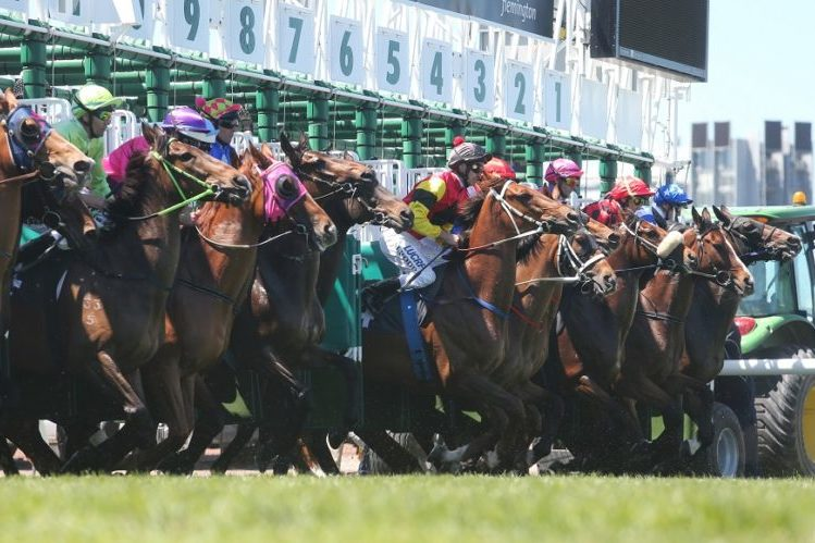 The start of race 3 at the Melbourne Cup at Flemington Racecourse in Melbourne, Tuesday, Nov. 5, 2013. (AAP Image/David Crosling) NO ARCHIVING, EDITORIAL USE ONLY